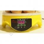 Мини-инкубатор на 7 яиц автоматический с терморегулятором HHD