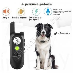 Электроошейник тренировочный с функцией записи команд DogTraining до 3 собак