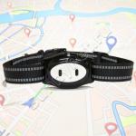 GPS ошейник для кошек и собак D79